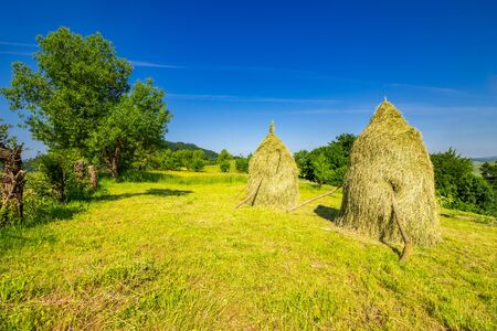 two haystacks and a tree on a green meadow at the mountain hill Stock Photo