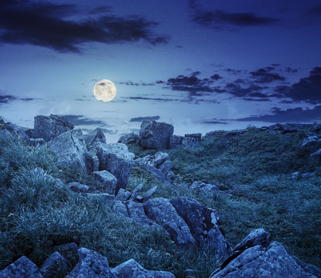 white sharp boulders on the grassy meadow with some dandelions on the edge of high mountain range at night in full moon light
