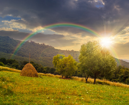 haystack near two trees on a green meadow at the mountain hill under the rainbow at sunset