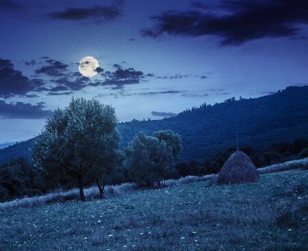 haystack near two trees on a green meadow at the mountain hill at night in full moon light