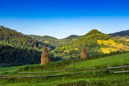 wooden fence in front of haystacks on a green agricultural meadow among the forest in mountains Stock Photo