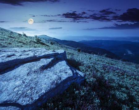 dandelions anmong white sharp stones on the hillside meadow on top of mountain range at night in full moon light