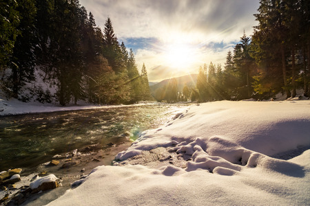 frozen river among conifer forest with snow on the ground in carpathian mountains in evening light Stock Photo