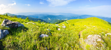 panoramic landscape with narrow meadow path in grass among white stones on top of mountain range in morning light