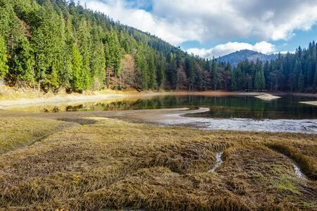 view on crystal clear lake with rocky shore near the pine forest at the foot of the  mountain Stock Photo