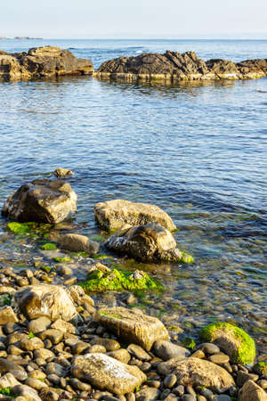 boulders, stones and seaweed on the rocky coast of the sea, on a cloudy morning Stock Photo