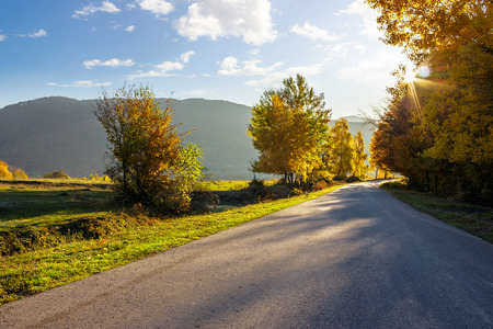 asphalt road going  passes through the autumn forest in mountain