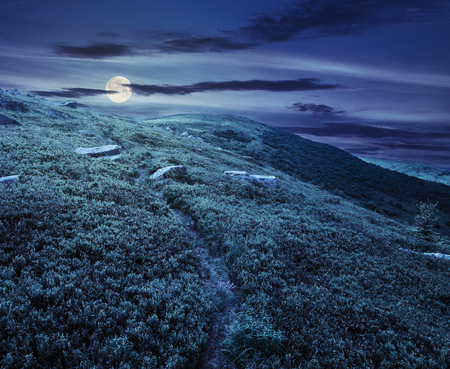 path through hillside with huge white sharp boulders near mountain peak at night in full moon light