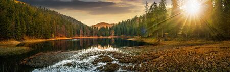 view on crystal clear lake with grassy shore near the pine forest at the foot of the  mountain in evening light
