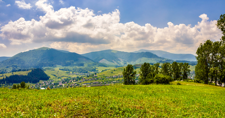 summer rural landscape. meadow with few trees near the village in mountain valley