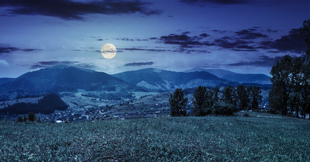 summer rural landscape. meadow with few trees near the village in mountain valley at night in full moon light