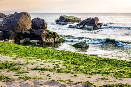 calm sea with some wave attacks the sandy beach with boulders and seaweed and break on them in early morning