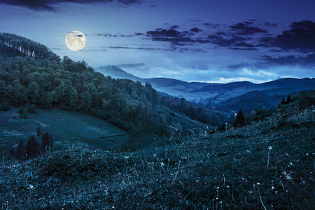meadow on a hillside near the forest in rural area in summer fog at night in full moon light Stock Photo