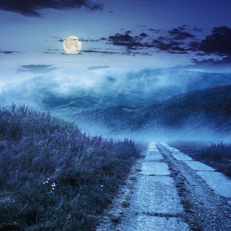 composite summer landscape with high wild grass and purple flowers in fog near the road on mountain hillside at night in full moon light