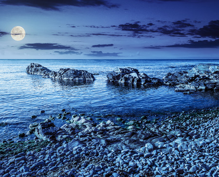 rocky coast with seaweed near the blue sea at night in full moon light