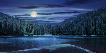 landscape near the lake among conifer forest in mountains at night in full moon light