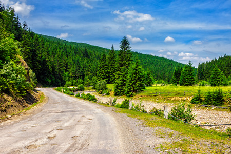 old cracked asphalt road going in mountains and passes through the green conifer forest Stock Photo