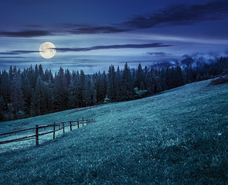 autumn landscape. fence on the hillside meadow near forest in mountain at night in full moon light Stock Photo