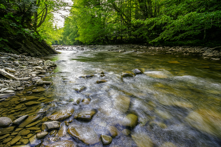 river with stones on the shore in the forest near the mountain slope. long exposure shot.