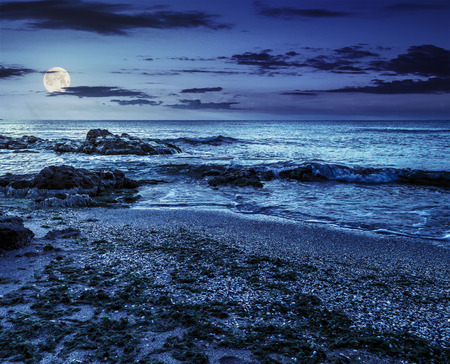 number of stones and rock on the sandy sea coast. seaweed lie on the sand made ??by the storm. at night in full moon light