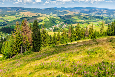 summer rural landscape. village on the hillside. forest on the mountain under the blue sky with clouds