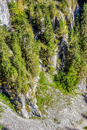 View from the top to the canyon in romanian mountains with spruce forest