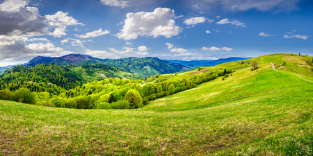 Idyllic view of pretty farmland rolling hills. Rural landscape near the forest in mountains.