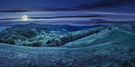 Idyllic view of pretty farmland rolling hills. Rural landscape near the forest in mountains at night in full moon light