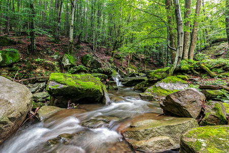Mountain stream flows among the rocks through green forest Stock Photo - 61105170