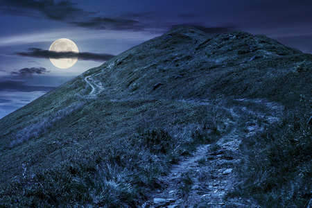 summer mountain landscape. foot path through hill side to the mountain top in full moon light Stock Photo