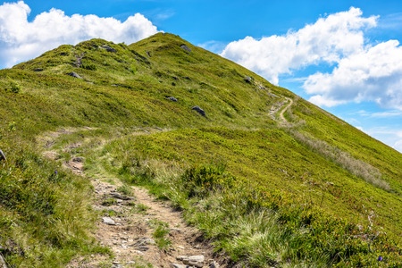 foot path: summer mountain landscape. foot path through hill side to the mountain top