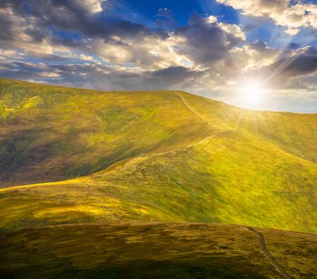 hillside: winding road through large meadows on the hillside of Polonina mountain range in evening light