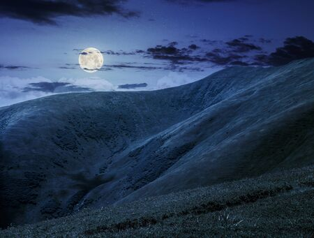 hillside: green grass on hillside meadow in high mountains under the cloudy sky at night in full moon light
