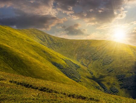 green grass on hillside meadow in high mountains under the cloudy sky in evening light