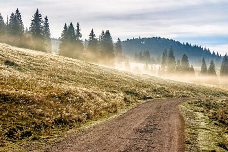 road through the valley near the foggy forest in mountains at hot sunrise Stock Photo