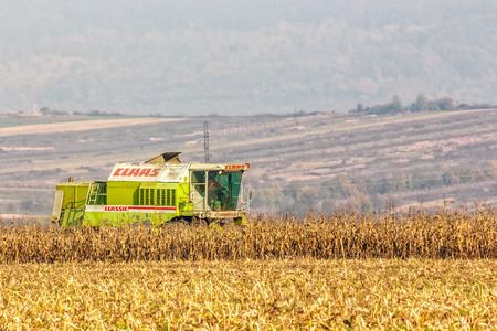 corn stalks: Mukachevo, Ukraine - November 6 2015: harvester in the field removes the corn stalks in late fall haze day Editorial