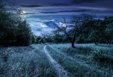 Winter meets summer composite landscape. Curve road through rural valley with trees and green grass going to forest in mountains with snowy peak under cloudy sky at night in full moon light Stock Photo