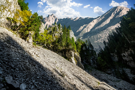 Composite mountain image. Canyon with spruce trees in mountains with rocky peaks