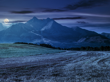 Tatra mountains in evening haze behind the forest and rural field at night in full moon light Stock Photo