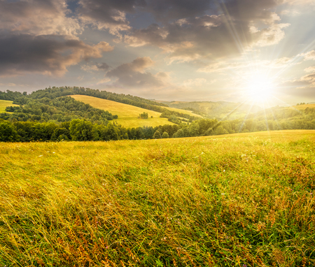 summer counrtyside landscape with tree on meadow in mountains and haystacks on a far green slop in evening light Stock Photo