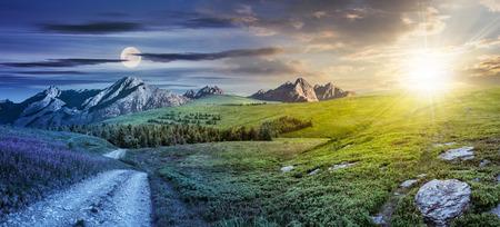 24 heures concept. paysage composite d'été avec l'herbe et des fleurs violettes sauvages élevées près de la route à la forêt sur une colline de la montagne et des pics rocheux dans la distance