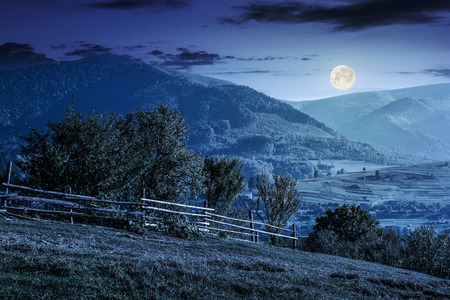 fence near the path on the hillside. forest in fog on the mountain early in the morning at night in full moon light