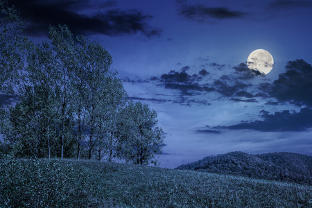 few trees on meadow on  hillside near forest in early autumn at night in full moon light Stock Photo