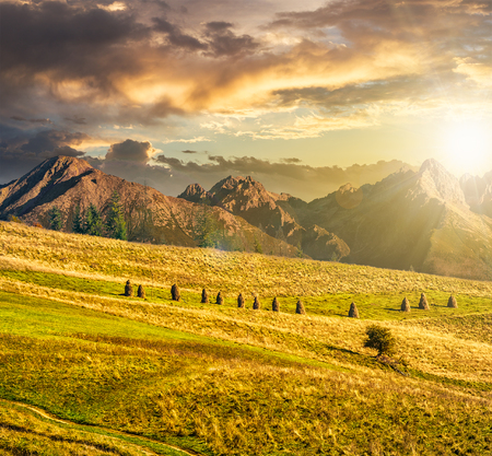 Composite Landscape image. Lonely tree near haystacks on rural fields at the foot of Tatra mountains in evening light Stock Photo