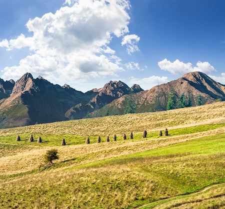 Composite Landscape image. Lonely tree near haystacks on rural fields at the foot of Tatra mountains Stock Photo