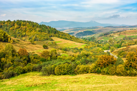 Rural landscape with fields and forest on hillsides of Carpathian mountain rang Stock Photo