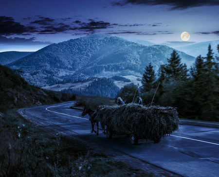 cart with hay on the way to mountainous rural area through the spruce forest in Carpathians at night in full moon light Stock Photo