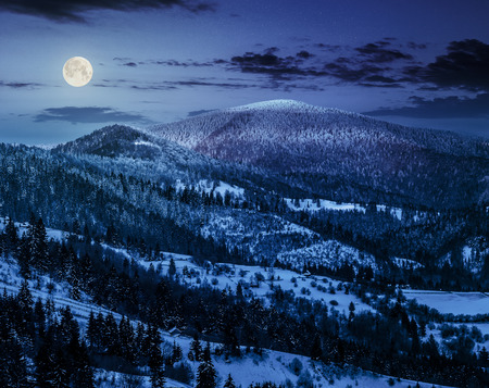carpathian mountain rural area near peaks in snow on frosty at night in full moon light in winter