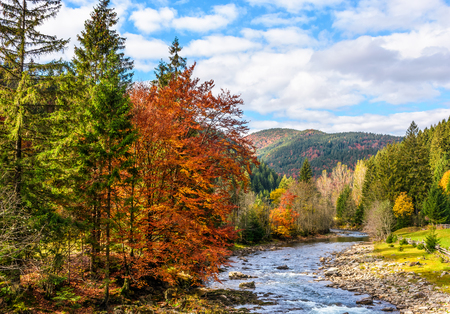 autumn landscape. rocky shore of the river that flows near the forest at the foot of the mountain