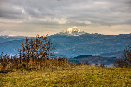 high mountain snowy peak lit by sun ray over meadow with yellow grass an tree on cloudy autumn day Stock Photo